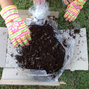 Housing Your Compost