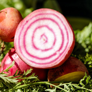 Rainbow Beetroot