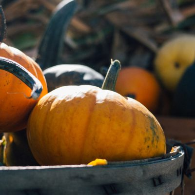 3 outstanding pumpkin recipes that will inspire you to cook!