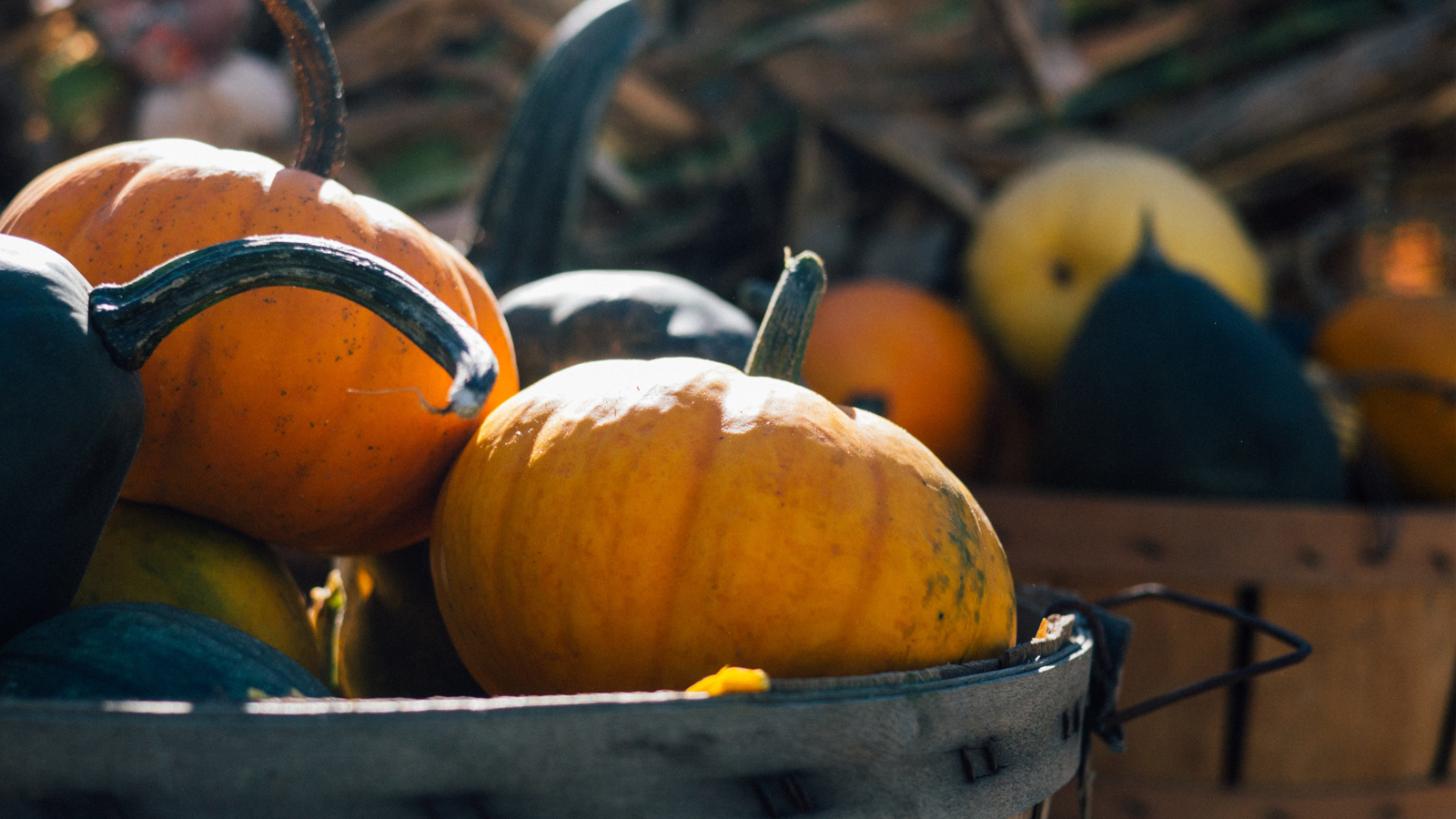 3 outstanding recipes for pumpkin that will inspire you to cook