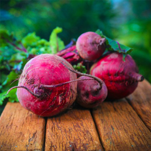 Easy to grow veggies - Beetroot