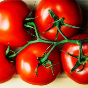 Easiest vegetables to grow in Australia - Tomatoes