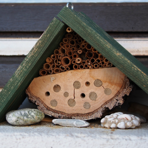 Beneficial insects in Australia - Bug Hotel