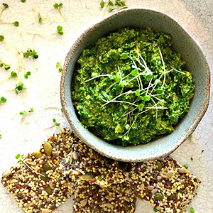 Recipes using Microgreens - Microgreen Rocket Pesto
