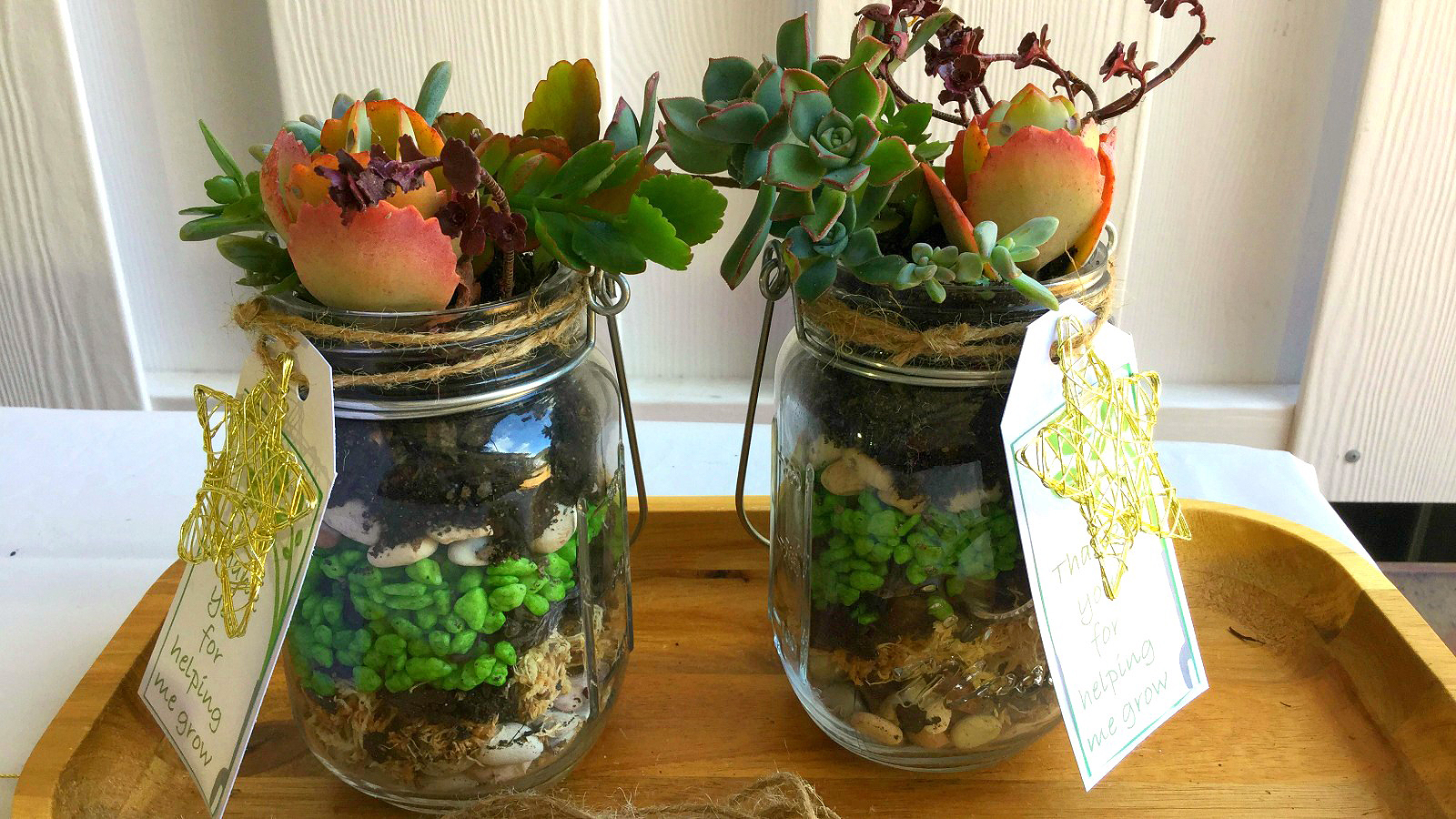 You'll love these easy to make plant gifts for teachers