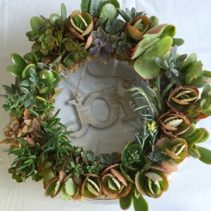 how to make a living wreath with succulents