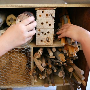 Insect Hotel Kids Filling The Shelves