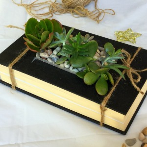Succulent planters from old books