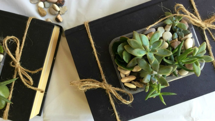 Learn how to create succulent planters from old books