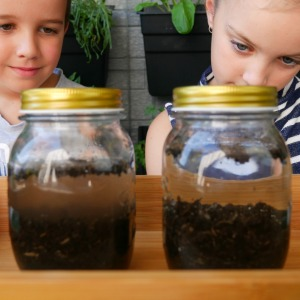 Garden soil - jars before shaken