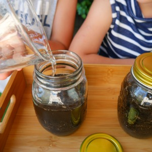 Garden soil - fill up jars with water