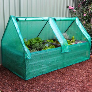 Large Drop over Greenhouse