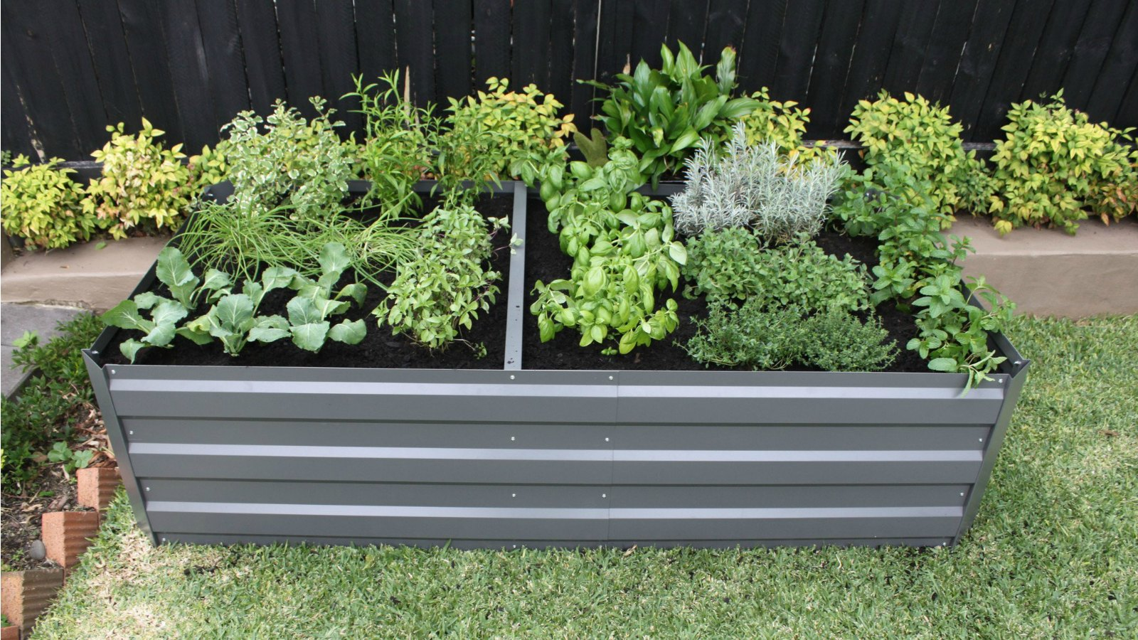 Benefits of raised garden beds you won't believe!
