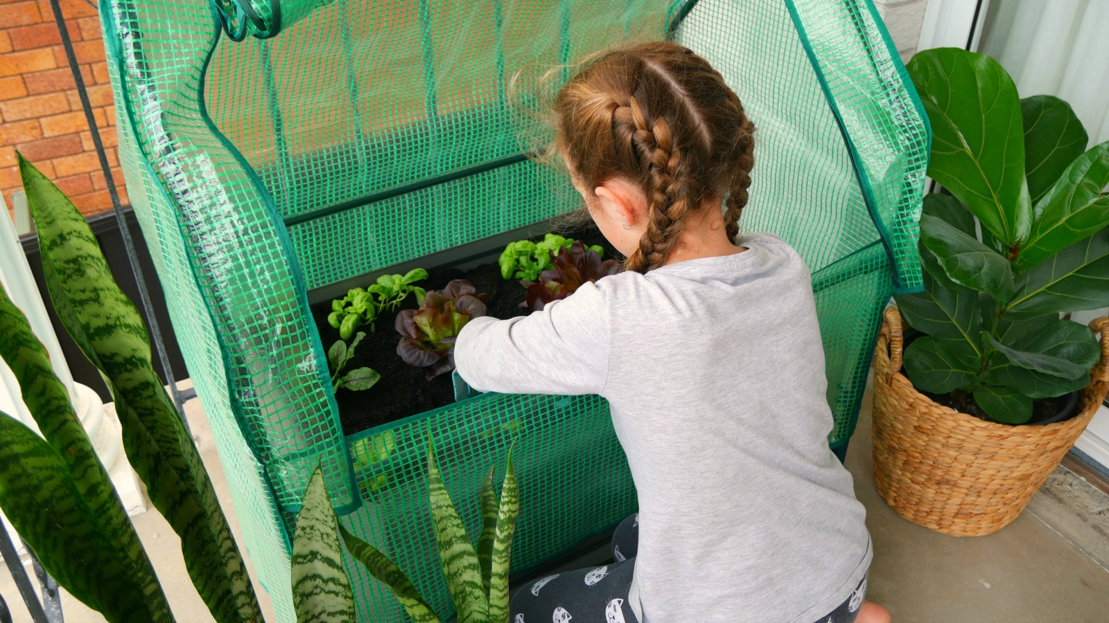 Balcony garden: The perfect first garden for kids