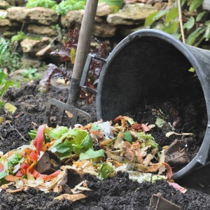 household waste recycling - outdoor compost