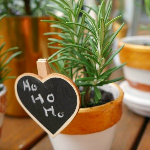 rosemary cuttings chalk peg gift tag