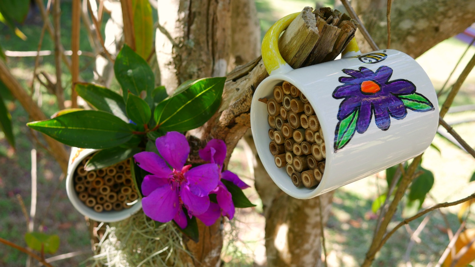 How to make a mug bug hotel
